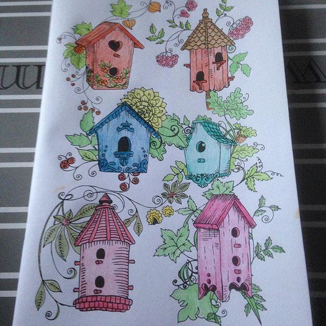 Instagram media acrazylady - Moest bij deze kleurplaat gelijk aan mijn moeder denken #vogelhuisje #kleurinhetklein #denksport