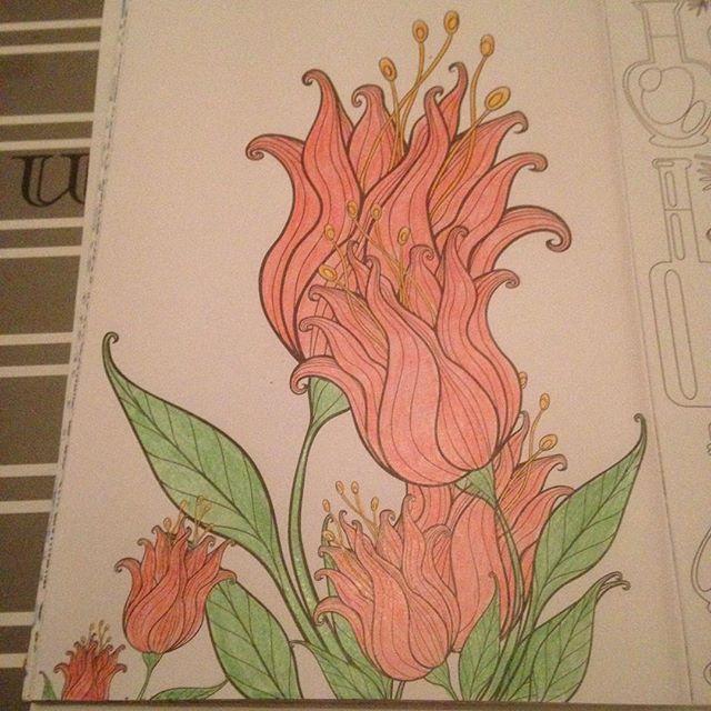 Instagram media acrazylady - #denksport #kleurinhetklein #flowers