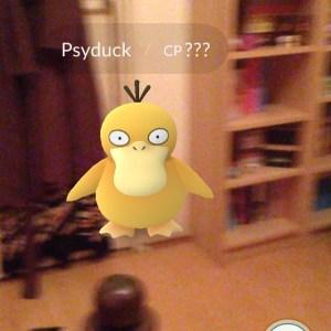 Instagram media acrazylady - Er zat een indringer in mijn slaapkamer. Eentje die kon vliegen #pokemongo