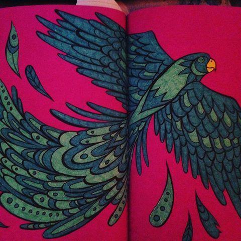#hetenigeechteneonkleurboek vogel