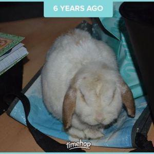 Alweer 6 jaar geleden. 🙁